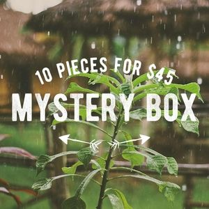 10 pieces for $45 mystery box